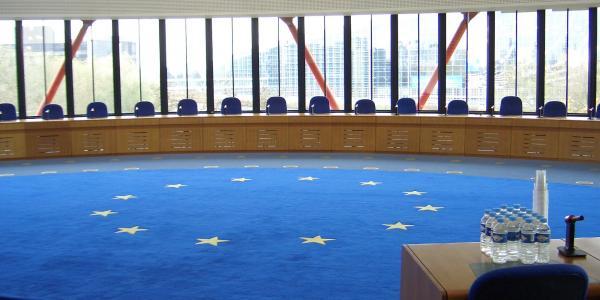 """Le """"vie europee"""" per il rispetto dei nostri diritti. Manuale per il cittadino"""