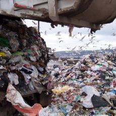 Multe UE: Buschini ha ragione su ciclo rifiuti, ma perché tace su maxi multe derivanti da negligenze della Regione Lazio?